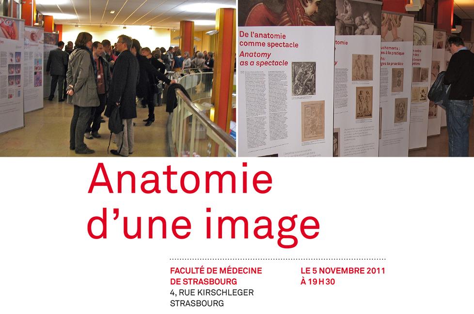 anatomieduneimage_a14