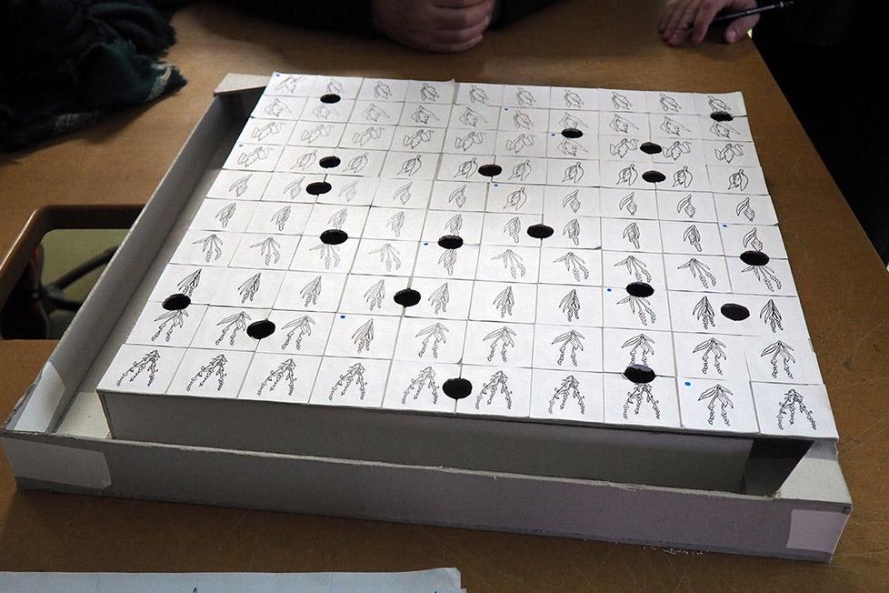 making_of_jeux_botaniques04