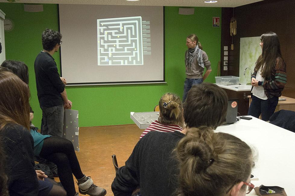 making_of_jeux_botaniques08