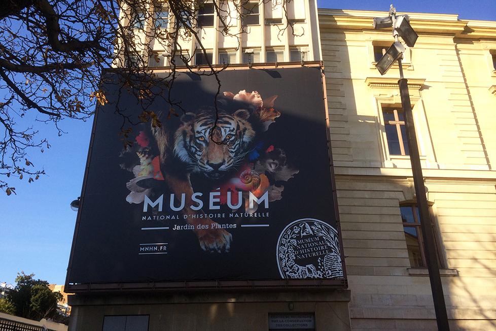 museum39