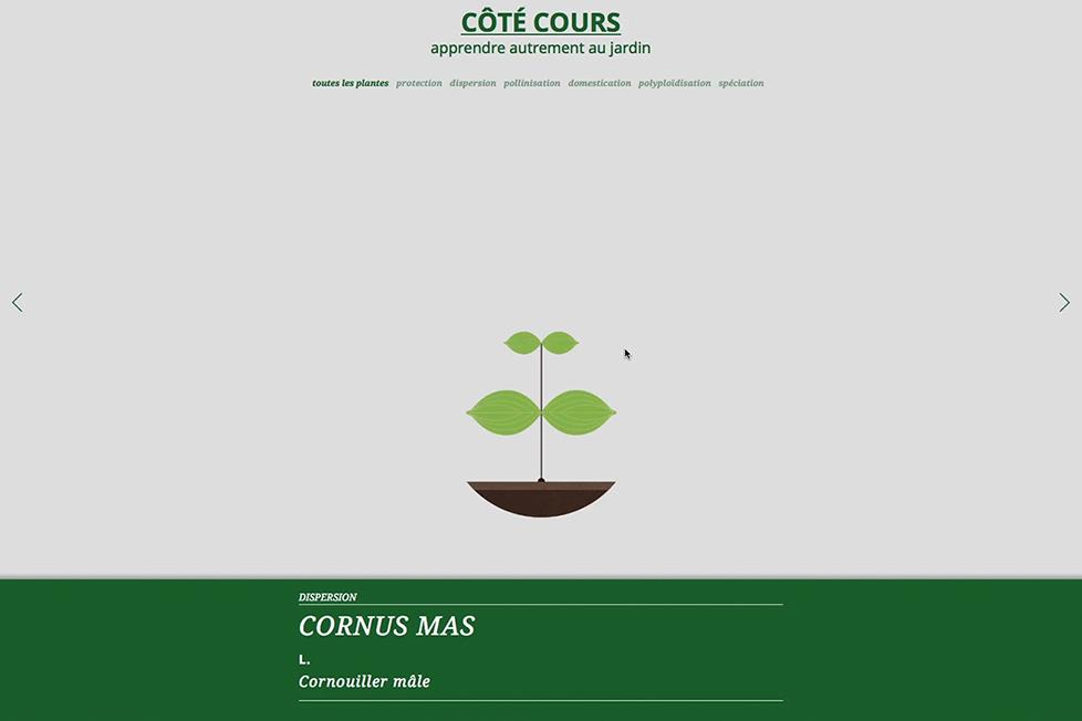 site_internet_cote-cours07