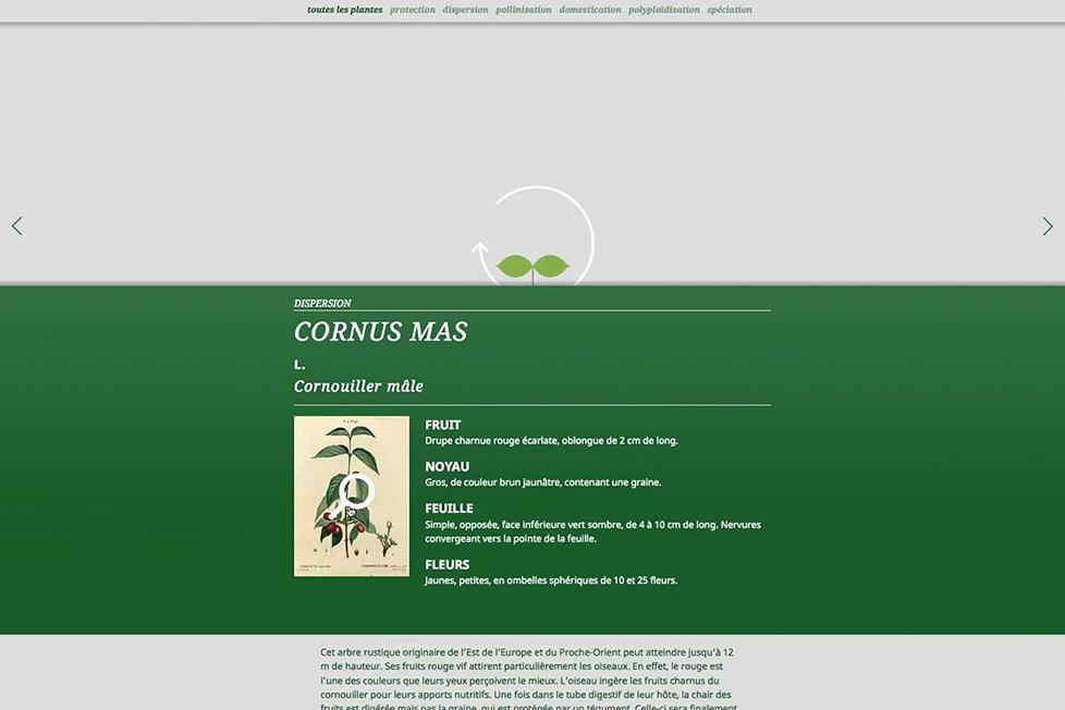 site_internet_cote-cours08