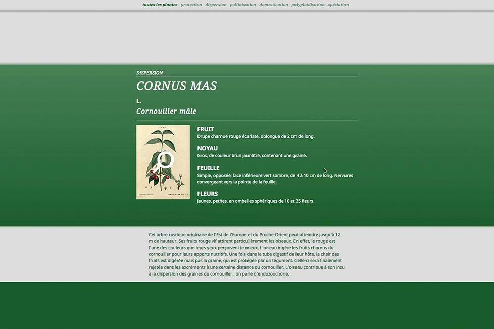 site_internet_cote-cours10