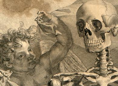 Visuel - Albinus|Interprétation tactile de l'atlas anatomique d'Albinus