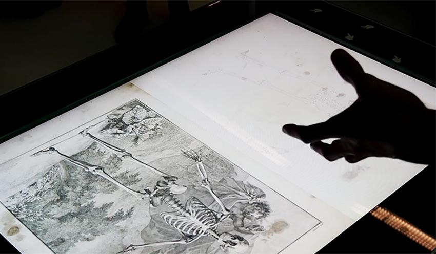 Visuel - Didactique tangible au Musée Tomi Ungerer
