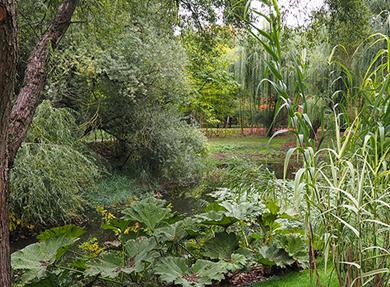 Visuel - Parcours didactique au Jardin botanique|de l'Université de Strasbourg